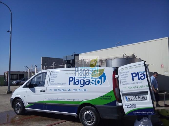 Empresa de control de plagas en c rdoba y sevilla for Control de plagas sevilla