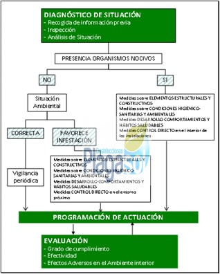 certificado DDD control plagas