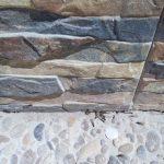 plaga termitas aladas cuevas ondas Málaga antes del tratamiento