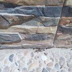 plaga termitas aladas cuevas ondas Málaga saliendo del nido