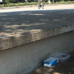 Plaga de cucarachas afecta al Vial Norte de Córdoba