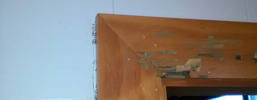 termitas puertas polideportivo municipal
