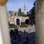 2º Fase de trabajos Tratamiento de carcoma por inyección en los Reales Alcázares de Sevilla tratamiento en vigas y artesanado de techos