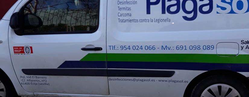 Empresas desinfección Sevilla