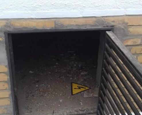 Acceso de ratas al edificio